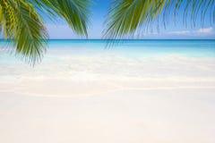 Piękna plaża i niebieskie niebo przy Similan wyspą, Tajlandia obrazy royalty free