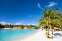 Piękna plaża na bor borach Zdjęcie Stock