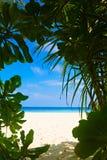 Piękna plaża na tropikalnej wyspie Obrazy Stock