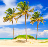 Piękna plaża Varadero w Kuba Zdjęcia Stock