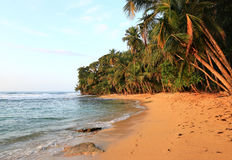 Piękna plaża w Costa Rica obraz stock