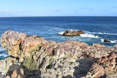 Piękna plaża w Hermanus siedzi na skale w Południowa Afryka z dwa ślicznymi dassies Zdjęcie Stock