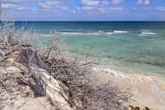 Piękna plaża w Kuba Zdjęcia Stock