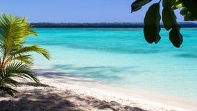 Piękna plaża z nieskazitelną turkus wodą w konflikt wyspie, Papua - nowa gwinea zdjęcia stock