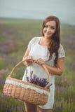 Piękna Provence kobieta relaksuje w lawendy pola dopatrywaniu na zmierzchu mienia koszu z lavanda kwitnie serifs Nęcąca dziewczyn Obraz Stock