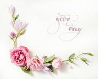 Piękna róży rama Zdjęcia Stock