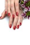 Piękna ręka z gwoździa czerwonym manicure'em i kwiatem obrazy royalty free