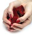 Piękna ręka z gwoździa czerwonym manicure'em i płatkami Obraz Stock