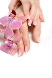 Piękna ręka z pięknego gwoździa francuskim manicure'em Obraz Stock