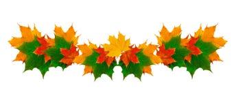 Piękna rama żółci jesień liście z miejscem dla teksta Zdjęcie Stock