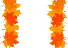 Piękna rama żółci jesień liście z miejscem dla teksta Obraz Stock