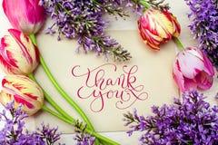 Piękna rama bzy i tulipany dla kartka z pozdrowieniami z słowami dziękujemy was Fotografia Royalty Free