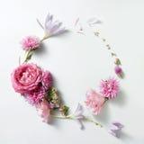 Piękna rama róże w rocznika stylu Obraz Royalty Free