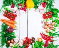 Piękna rama różni warzywa i pikantność Obrazy Stock