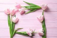 Piękna rama robić tulipany dla Macierzystego ` s dnia Obrazy Stock