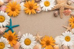 Piękna rama składać się z kwiaty, denne gwiazdy, morze skorupy kłama na piasku Obrazy Royalty Free