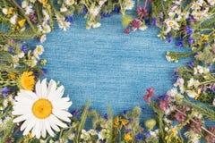 Piękna rama wildflowers kłama na cajgach Zdjęcia Stock