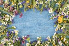 Piękna rama wildflowers kłama na drelichowej tkaninie Obraz Stock