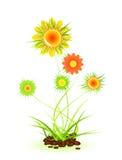 piękna roślina Ilustracja Wektor