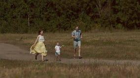 Piękna rodzinna latająca cudowna kania w polu zbiory