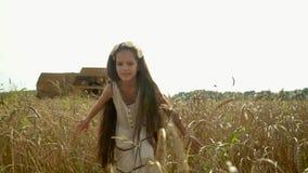 On piękna Rosyjska dziewczyna w śródpolnych pshinyets w Rosja Dziewczyna z długim ciemnym włosy iść pszeniczni przeciw ucho zbiory