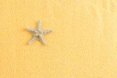 Piękna rozgwiazda na dekoracyjnego pomarańczowego piaska odgórnym widoku obraz stock