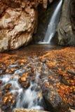 Piękna rzeczna siklawa w jesień lesie, mała siklawy część Fotinski siklawy, Rhodope góry, Bułgaria Zdjęcie Stock