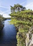 Piękna sceneria od wierzchołka wzgórze Fotografia Stock
