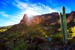 Piękna sceneria pustynia w ciągu dnia fotografia stock