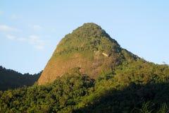 Piękna sceneria zielony las i gładzi skałę Obraz Stock