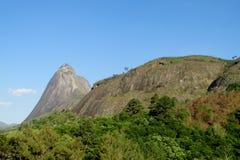 Piękna sceneria zielony las i gładzi skałę Zdjęcia Stock
