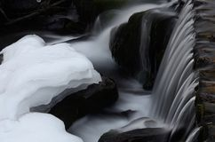 Piękna Shipot siklawy kaskada w Karpackich górach, Ukraina Obrazy Royalty Free