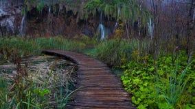 Piękna siklawa, jeziora i jesień las w Plitvice parku narodowym, Chorwacja zbiory wideo