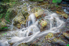 Piękna siklawa na halnym skłonie w głębokim lesie Zdjęcie Stock