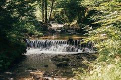 Piękna siklawa spada kaskadą na rzece w lesie w górach Ri Zdjęcie Stock