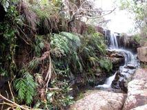 Piękna siklawa w Carrancas mg zdjęcie stock
