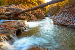 Piękna siklawa w lesie przy zmierzchem Jesień krajobraz, spadać liście Obraz Stock