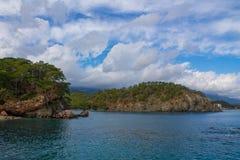 Piękna skalista linia brzegowa z morzy drzewami i falami zdjęcie royalty free