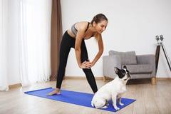 Piękna sprawności fizycznej dziewczyna robi sportów ćwiczeniom z psem obraz royalty free
