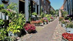 Piękna stara ulica w centrum miasta dekorował z kwiatami i roślinami Fotografia Royalty Free