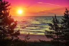 piękna, strzały lata morze słońca Obraz Royalty Free