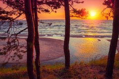 piękna, strzały lata morze słońca Obrazy Stock