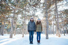 Piękna szczęśliwa pary pozycja w zima parku Fotografia Stock