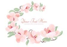 Piękna szczegółowa magnoliowa kwiatu okwitnięcia okręgu rama Obraz Stock