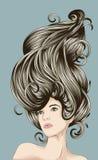 piękna szczegółowa włosiana kobieta ilustracji