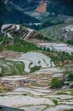 Piękna tarasowata pole sceneria w wiośnie Fotografia Stock