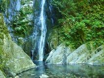 Piękna tropikalna mała siklawa wypełniał z jasną wodą zdjęcie royalty free
