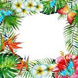 Piękna tropikalna palma opuszcza i kwiaty, akwarela ilustracji