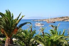 Piękna tropikalna plaża i spokojny morze Obrazy Royalty Free