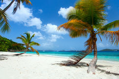 Piękna tropikalna plaża przy Karaiby Obraz Stock